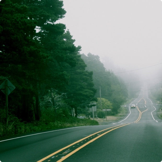 fog_street