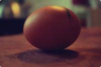 egg hovering