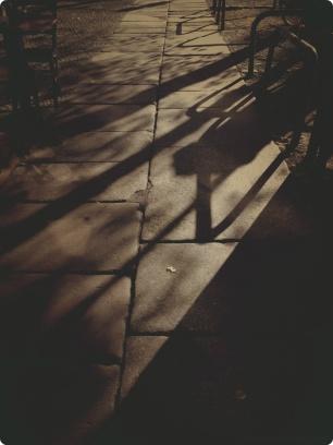 Wandering Shade